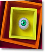 Eye In The Box Metal Print by Garry Gay