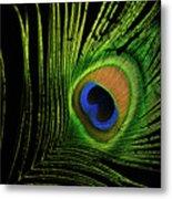 Eye Of A Peafowl Metal Print