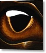Eye Of Baby Bronze Metal Print