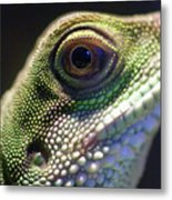 Eye Of Lizard Metal Print