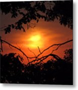 Eye Of Ra  Metal Print