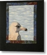 Eye Of The Gull Metal Print by Jenny Williams