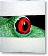 Eye Of The Red Eyed Tree Frog Metal Print