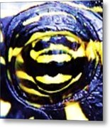 Eye Of The Turtle Metal Print
