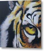 Eye Of Tiger Metal Print