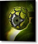 Eye Will See You In The Garden Metal Print