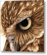Eyeful Metal Print