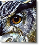 Eyes Of Owls No.25 Metal Print