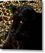 Eyes Of The Panther Metal Print