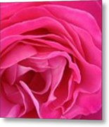 Fabric Of Rose Metal Print
