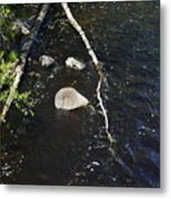 Face In The River Metal Print