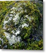 Face In The Stone Metal Print
