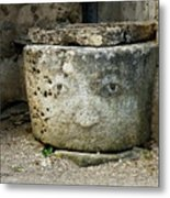 Faces Of Epoisses #4 Metal Print