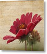 Faded Memories Metal Print
