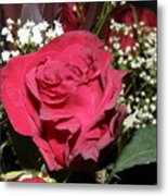 Faded Rose 1 Metal Print