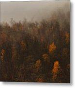 Fading Fall Colors I Metal Print