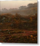 Fading Fall Colors II Metal Print
