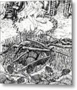 Fairy Dance Dragon Eggs Metal Print