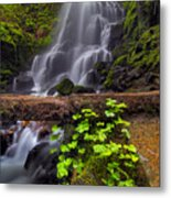 Fairy Falls In Spring Metal Print