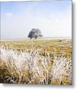 Fairytale Winter In Fingal Metal Print