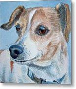 Beloved Dog Commission By Irina Sztukowski  Metal Print