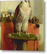 Falcon Metal Print by Sir Edwin Landseer