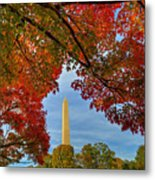 Fall 2015 Washington Dc Metal Print