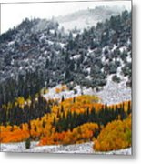 Fall And Winter Collide  Metal Print