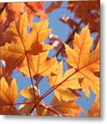 Fall Art Orange Autumn Leaves Blue Sky Baslee Troutman Metal Print