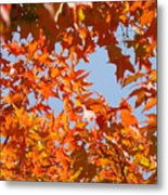 Fall Art Prints Orange Autumn Leaves Baslee Troutman Metal Print