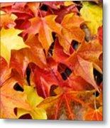 Fall Art Prints Red Orange Yellow Autumn Leaves Baslee Troutman Metal Print