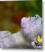 Fall Asleep Metal Print
