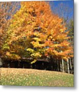 Fall At Kanuga Metal Print
