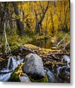 Fall At Mcgee Creek Metal Print