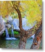 Fall At Murray Falls I Metal Print