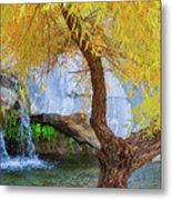 Fall At Murray Falls II Metal Print