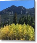 Fall At Twin Sisters Metal Print