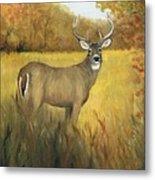 Fall Buck Metal Print