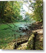 Fall By A River Metal Print