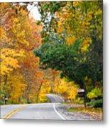 Fall Color Along Road  5643 Metal Print
