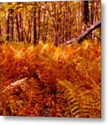 Fall Color In The Woods Metal Print