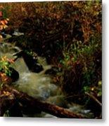 Fall Color Stream Metal Print