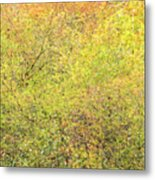 Fall Colors - Abstract Metal Print