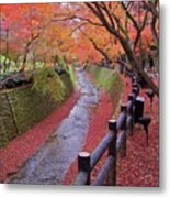 Fall Colors Along Bending River In Kyoto Metal Print by Jake Jung
