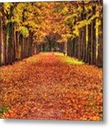 Fall Colors Avenue Metal Print