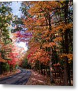 Fall Colors Backroad Metal Print