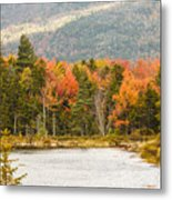 Fall Colors By The Lake Metal Print