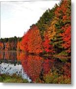 Fall Colors In Madbury Nh Metal Print