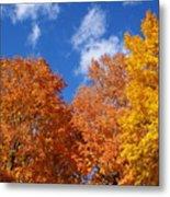Fall Colors In Spokane Metal Print