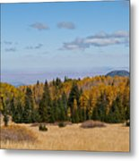 Fall Colors In The Inner Basin Metal Print